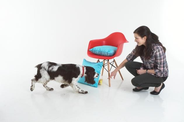 Claire trains a puppy.