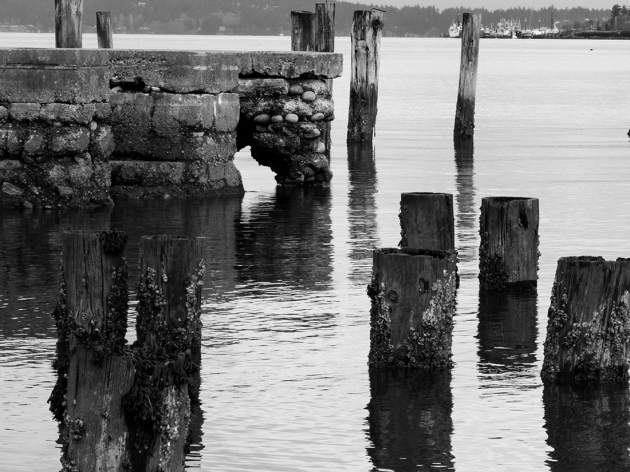 Ruins of old piling and docks