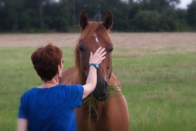Woman connecting with horse
