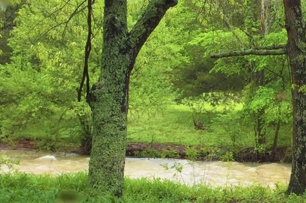 Mt. Judea creek