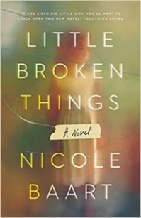 Nicole Baart's LITTLE BROKEN THINGS