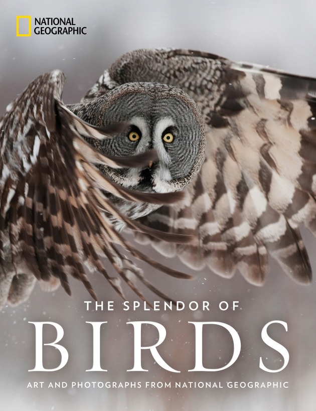 National Geographic's THE SPLENDOR OF BIRDS