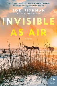 Zoe Fishman's INVISIBLE AS AIR