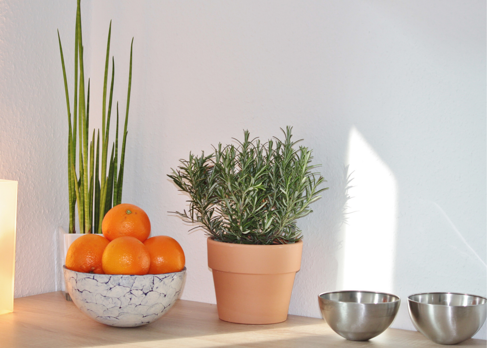 Rosemary and oranges