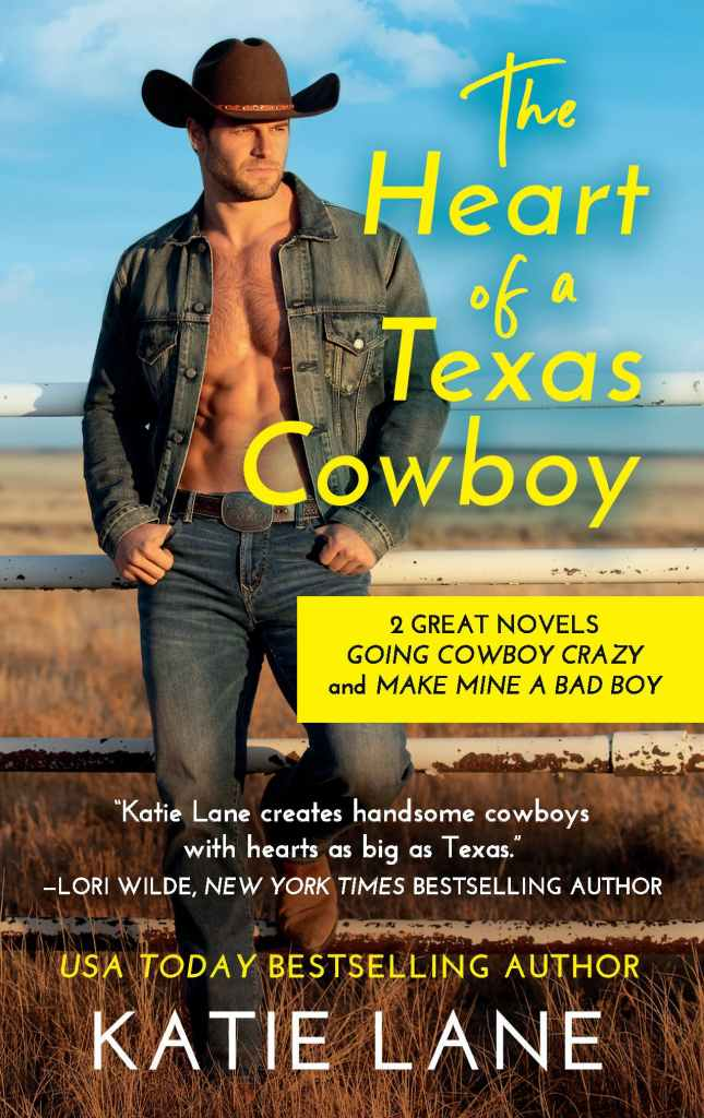 Katie Lane's THE HEART OF A TEXAS COWBOY